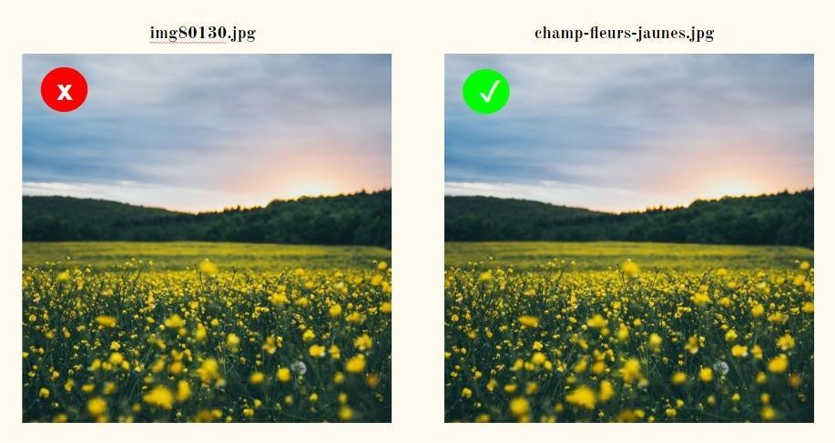 exemple d'optimisation du titre d'une photo