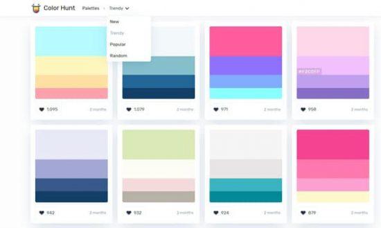 aperçu du site colorhunt